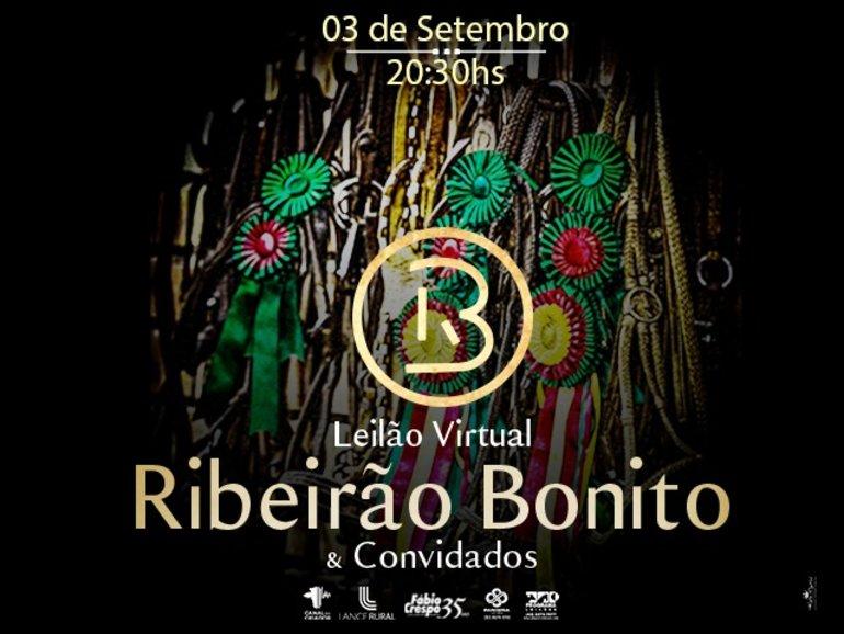 LEILÃO VIRTUAL RIBEIRÃO BONITO E CONVIDADOS