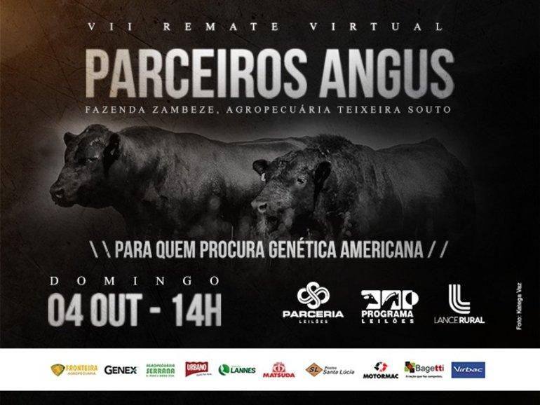 VII LEILÃO VIRTUAL PARCEIROS ANGUS
