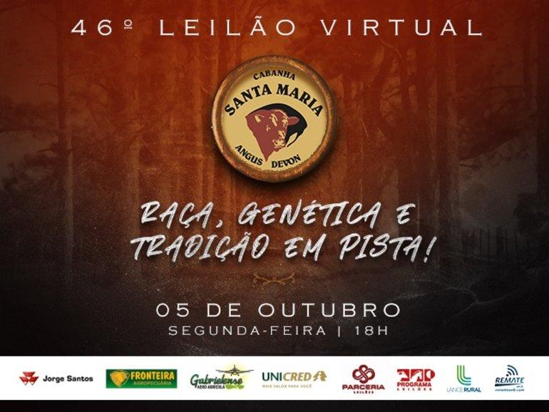 LEILÃO CABANHA SANTA MARIA - VÍDEOS