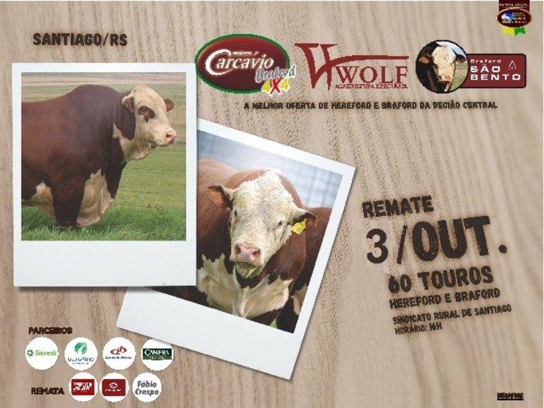LEILÃO CARCÁVIO, WOLF E SÃO BENTO