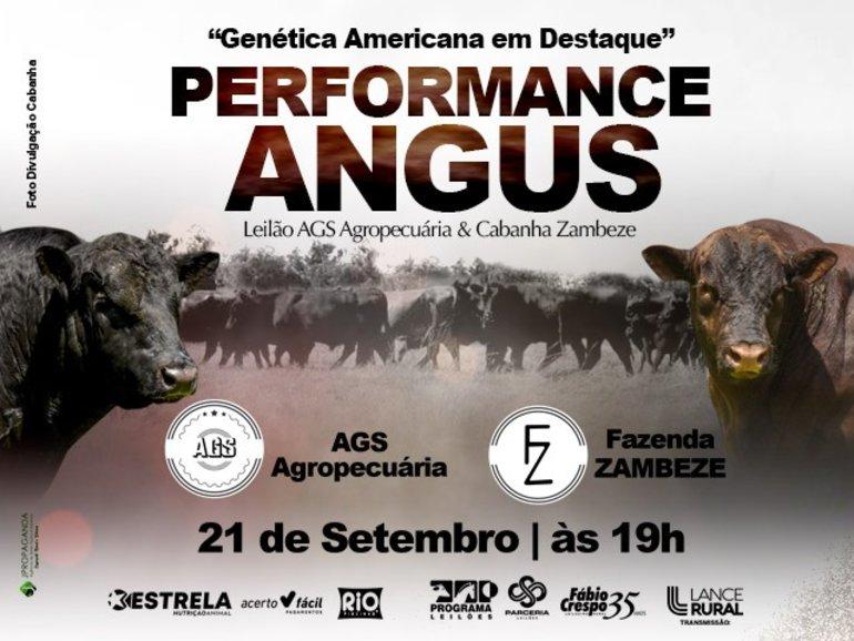 LEILÃO PERFORMANCE ANGUS - AGS AGROPECUÁRIA & CABANHA ZAMBEZE