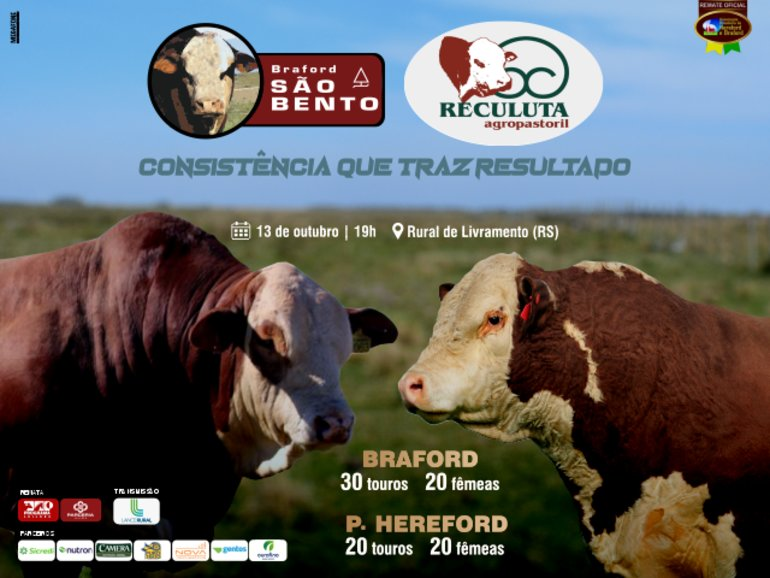 LEILÃO BRAFORD SÃO BENTO E RECULUTA AGROPASTORIL
