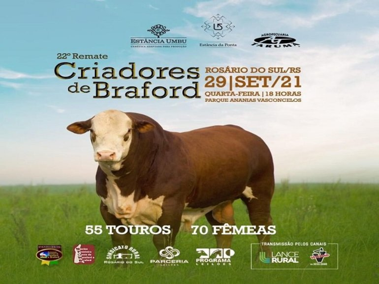 22º REMATE CRIADORES DE BRAFORD