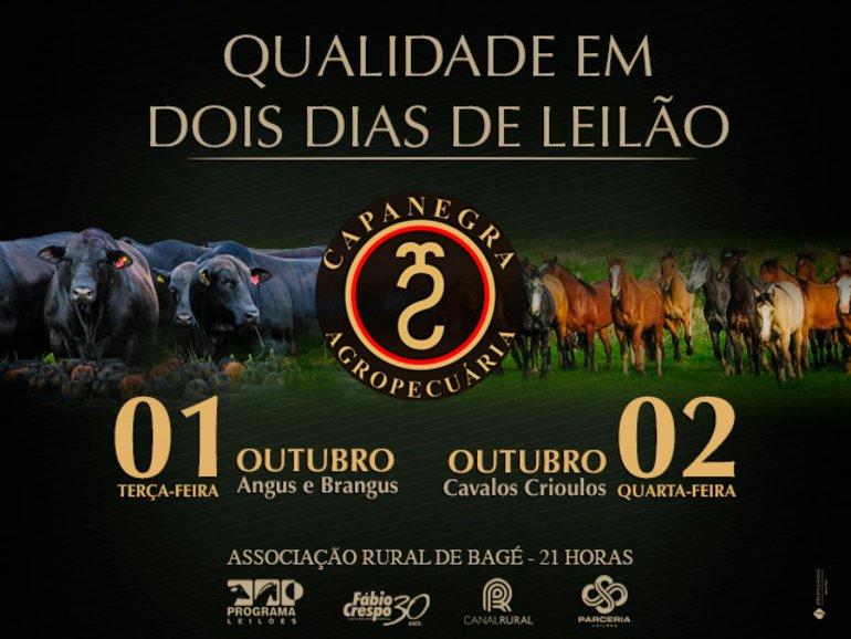 LEILÃO CAPANEGRA