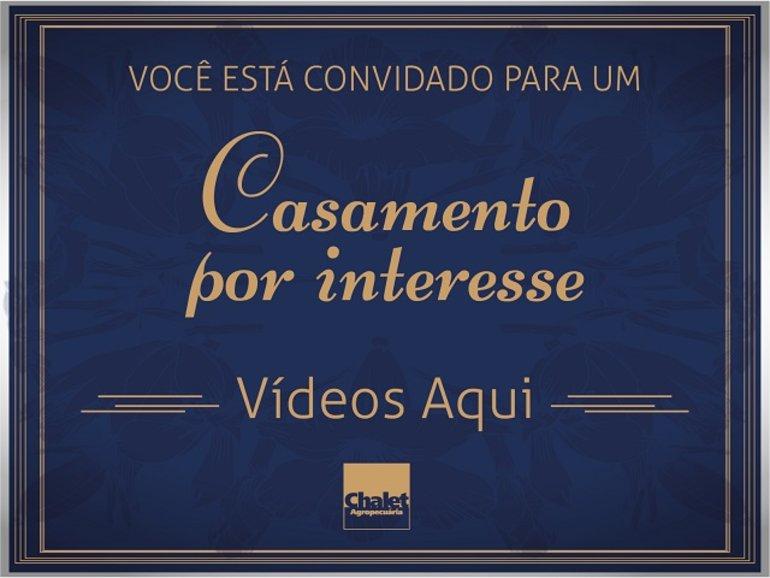 LEILÃO CHALET AGROPECUÁRIA - UM CASAMENTO POR INTERESSE  (VÍDEOS)