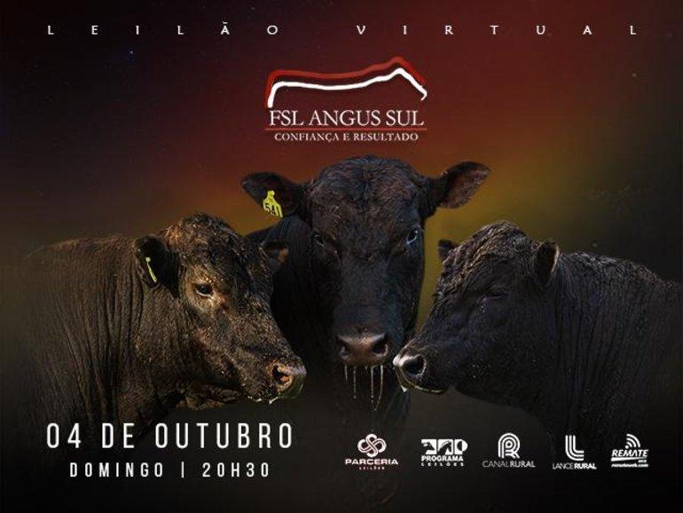 LEILÃO VIRTUAL FSL ANGUS - VÍDEOS