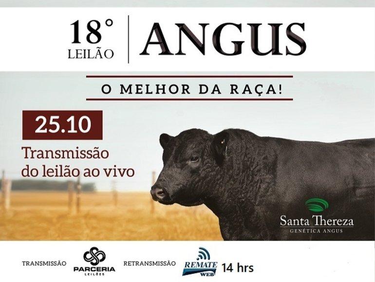 18º LEILÃO SANTA THEREZA