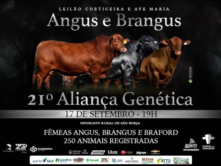 21º LEILÃO ALIANÇA GENÉTICA - CORTICEIRA E AVE MARIA ANGUS E BRANGUS