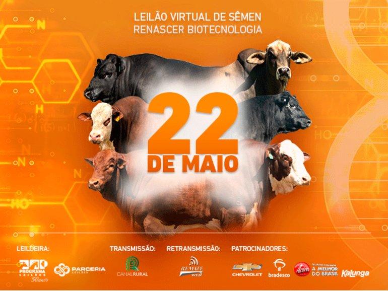 1° LEILÃO VIRTUAL RENASCER NO MARTELO
