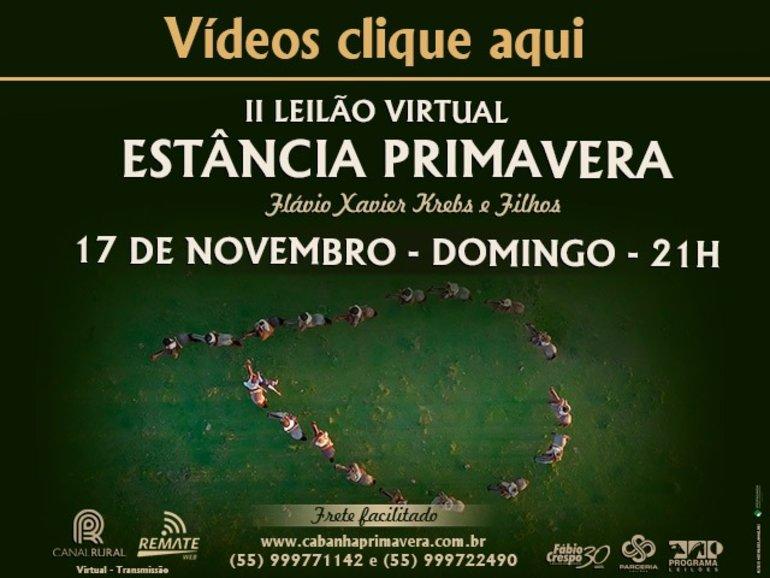 II LEILÃO ESTÂNCIA PRIMAVERA - VÍDEOS