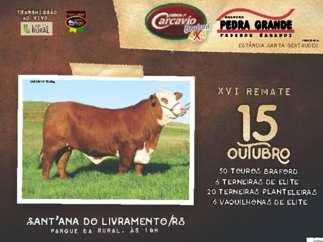 LEILÃO CARCAVIO E PEDRA GRANDE - CATALOGO