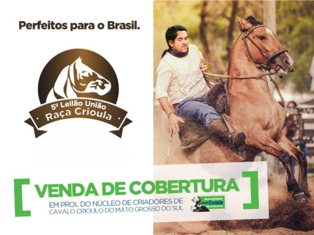 LEILÃO DE COBERTURAS EM PROL DO NCCCMS