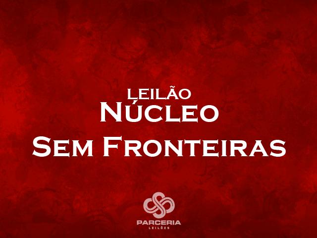 LEILÃO NÚCLEO SEM FRONTEIRAS