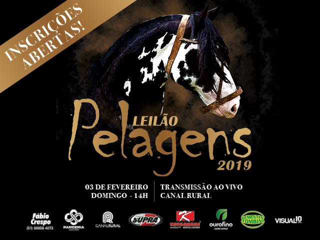 LEILÃO PELAGENS