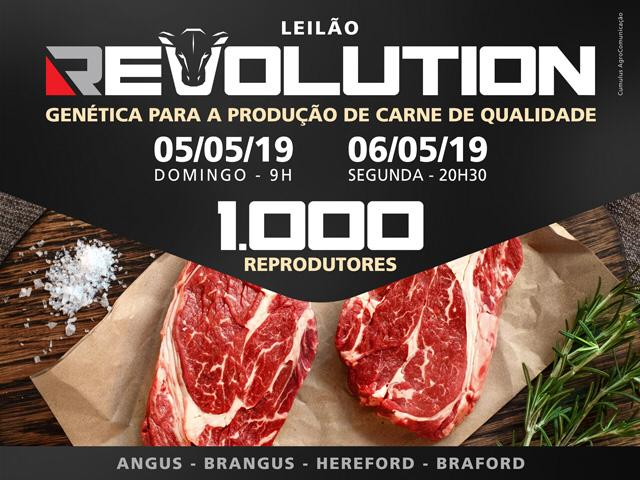 LEILÃO REVOLUTION