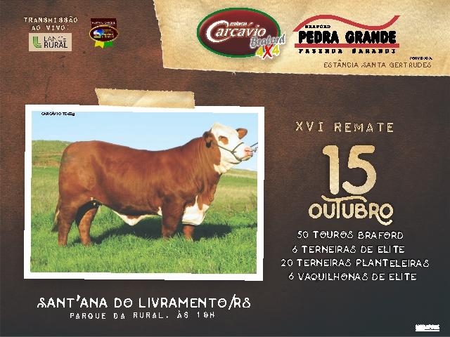 LEILÃO CARCAVIO E PEDRA GRANDE - VÍDEOS